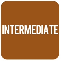 intermediate_icon
